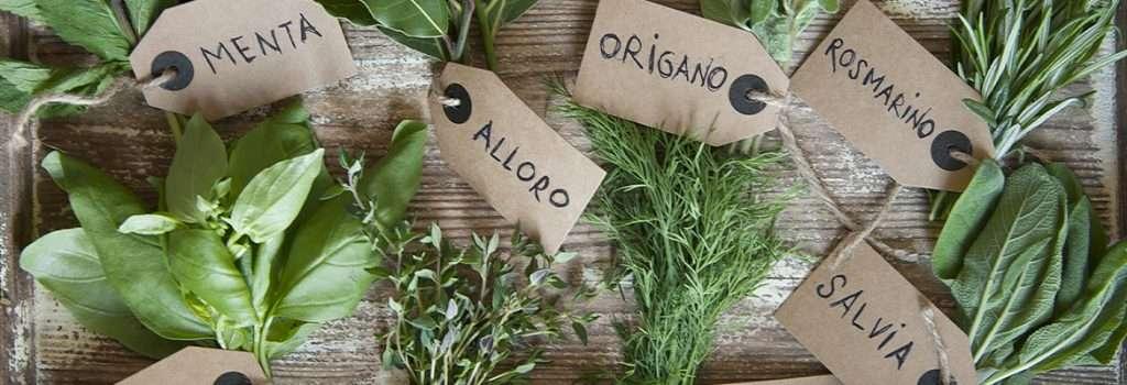 Erbe aromatiche nostrane bio